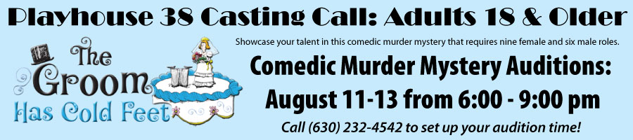 Murder Mystery Groom Has Cold Feet Auditions