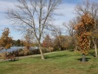 Bennett Park path