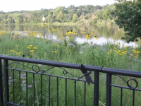 River Park summer