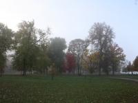 Island Park fog